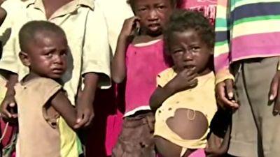 افزایش شمار گرسنگان جهان + فیلمسوء تغذیه ۲ میلیارد نفر در جهان + فیلم