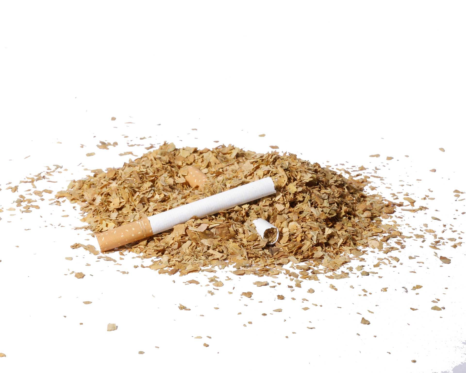 افزایش خامفروشی در توتون/ رشد 10 برابری صادرات توتون و کاهش چشمگیر صادرات سیگار