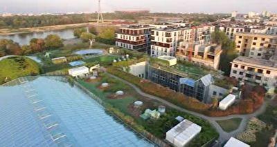 باغ یک هکتاری بر روی پشت بام دانشگاه ورشو + فیلمکتابخانهای به وسعت یک هکتار در پشت بام دانشگاه + فیلم