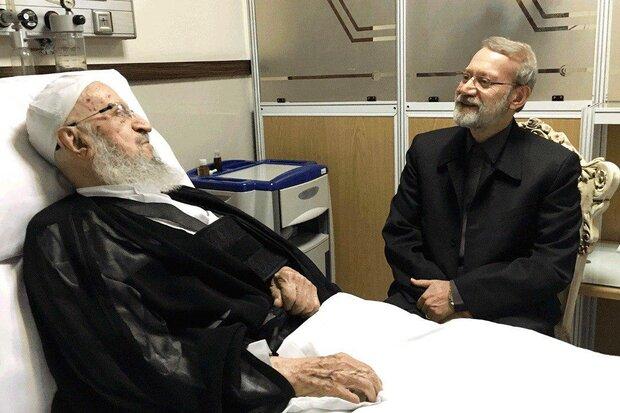 علی لاریجانی از آیتالله مکارم شیرازی عیادت کرد