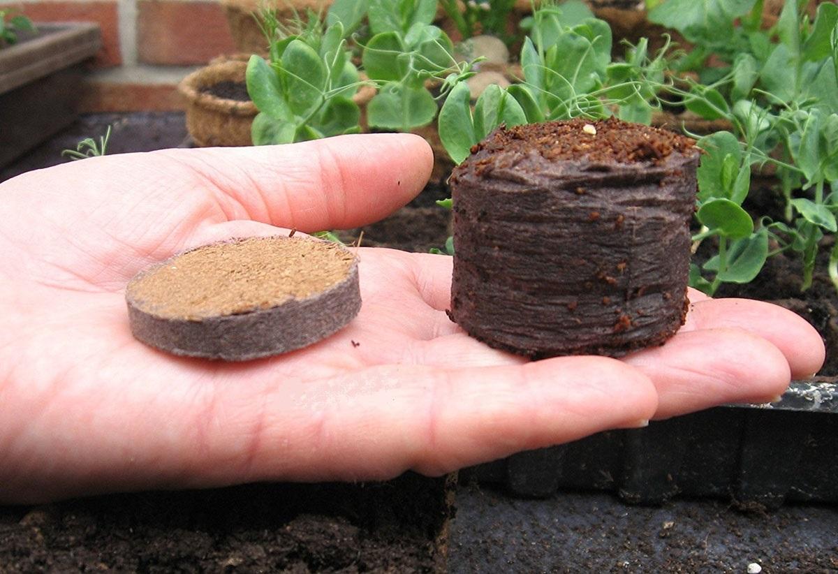 قرصهای فشرده یا گلدانهای فوری در راه برای تولید بیشتر محصولات کشاورزی /