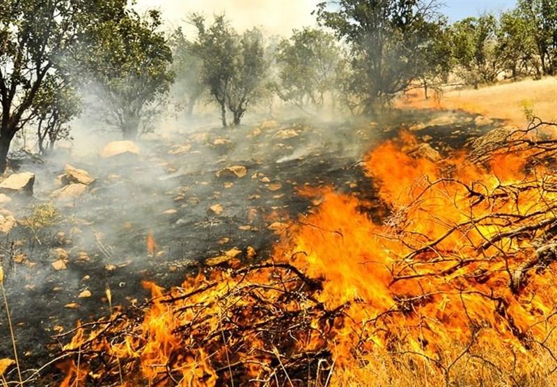 آتش سوزی کوه چرمین سیروان مهار شد