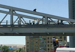 لحظه اقدام به خودکشی دختر جوان از روی پل هوایی در رشت + فیلم