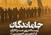 باشگاه خبرنگاران -پیادهروی جاماندگان اربعین در بوشهر برگزار شد