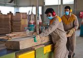 باشگاه خبرنگاران - دومینوی ورشکستگی صنعت چوب با رکود صادراتی