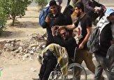 باشگاه خبرنگاران -زائر ویلچری که در پیادهروی اربعین تنها نماند + فیلم