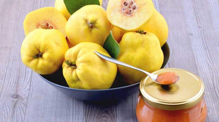 ساعت10/ماده غذایی که به اختلالات زنانه کمک می کند/ فواید فراوان  گیاهی زیبا بر سلامت بدن