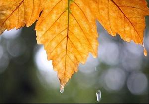 ادامه بارش های پاییزی در مازندران
