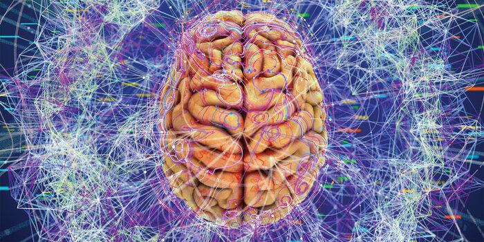 ۱۰ نکته درباره مغز؛ بیشتر از انیشتین از مغزمان استفاده میکنیم؟//////ثباتی