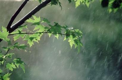 بارش باران پاییزی در ایلام