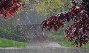 تداوم بارش ها تا هفته آینده