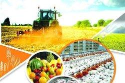 تولیدات محصولات استراتژی و مدیریت کشاورز بر محصول