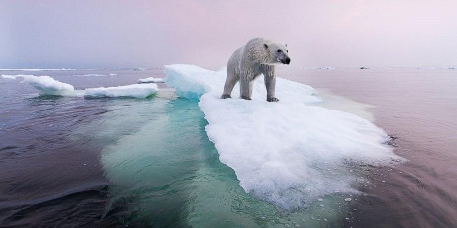 اگر همه یخچالهای طبیعی زمین یک شبه آب شوند چه اتفاقی میافتد؟