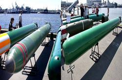 دانشی که بدون هیچ آموزشی در اختیار ایران قرار گرفت/ اژدرهای ۵۳۳ و TEST-۷۱ آماده شلیک + تصاویر