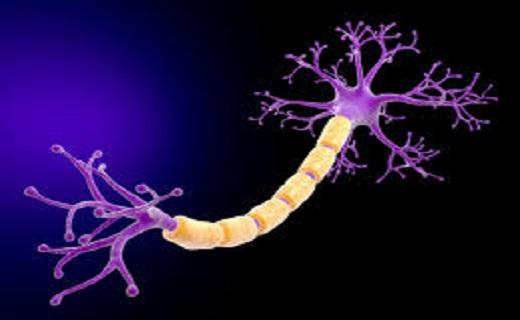 آیا مبتلایان به سندروم گیلن باره زنده میمانند؟