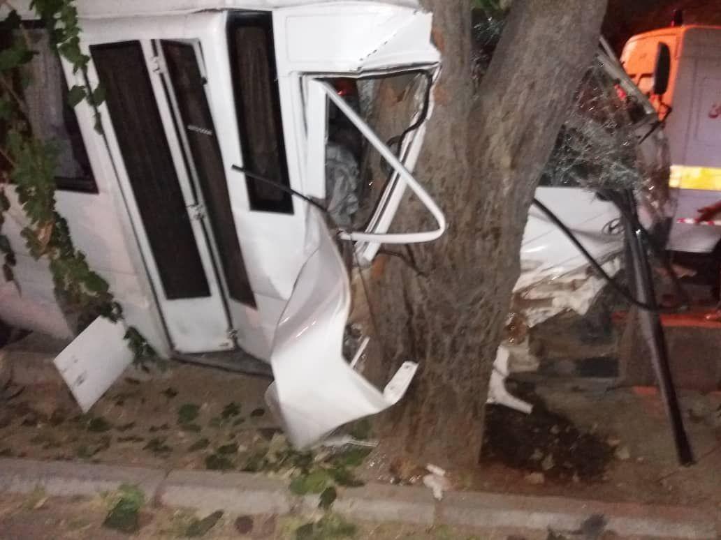 تصادف یک دستگاه مینی بوس با درخت/ حادثه 10مصدوم برجای گذاشت
