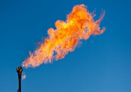 کنوکارپوس و فلرهای نفتی پای میز محاکمه/متهم تنگی نفس اهوازیها کدام است؟