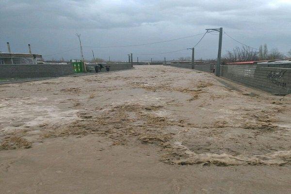 بارش های پاییزی و خسارت های شدید به کشاورزان جنوب کرمان