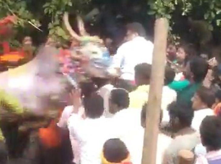 حمله وحشیانه گاو به سیاستمدار هندی+فیلم