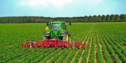 محبی///افزایش ۸۸ درصدی قیمت تراکتور/ نوسان قیمت ماشین آلات کشاورزی نسبت به دیگر حوزهها کمتر است