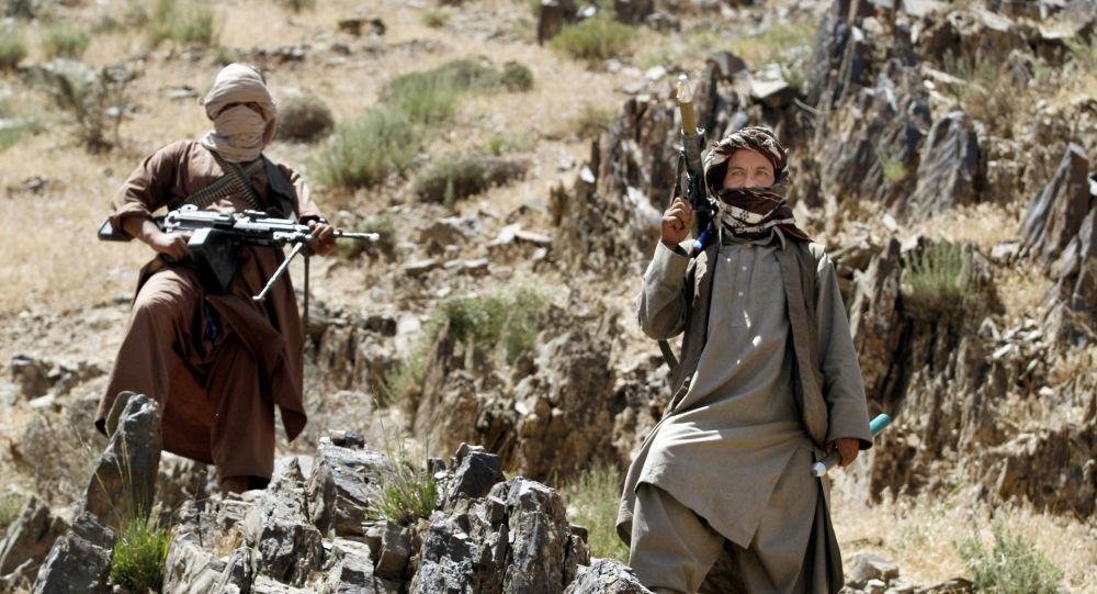 تلفات سنگین طالبان در ولایت ارزگان