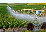 بازگشت ۱۲۰ طرح و پروژه راکد و نیمه فعال کشاورزی به چرخه تولید در اردبیل