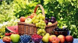 سیب دستچین کیلویی چند؟ + قیمت