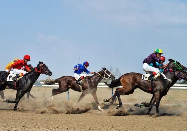 اعلام نتایج مسابقات اسب سواری پاییزه در ایلام