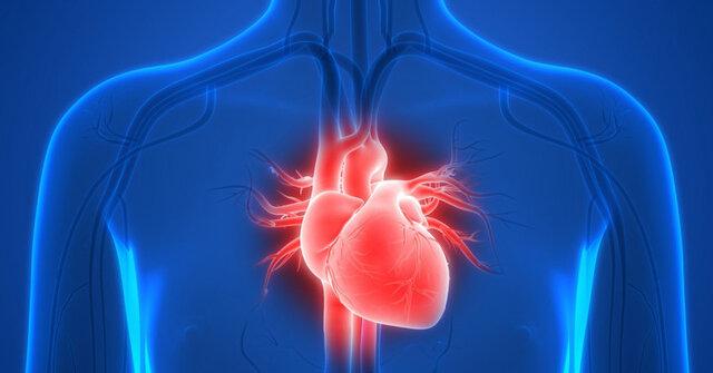 سلولهای قلب انسان در فضا تغییر میکنند
