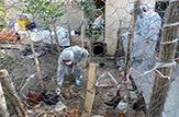 باشگاه خبرنگاران -موردی از بیماری آنفلوانزای فوق حاد پرندگان گزارش نشده است