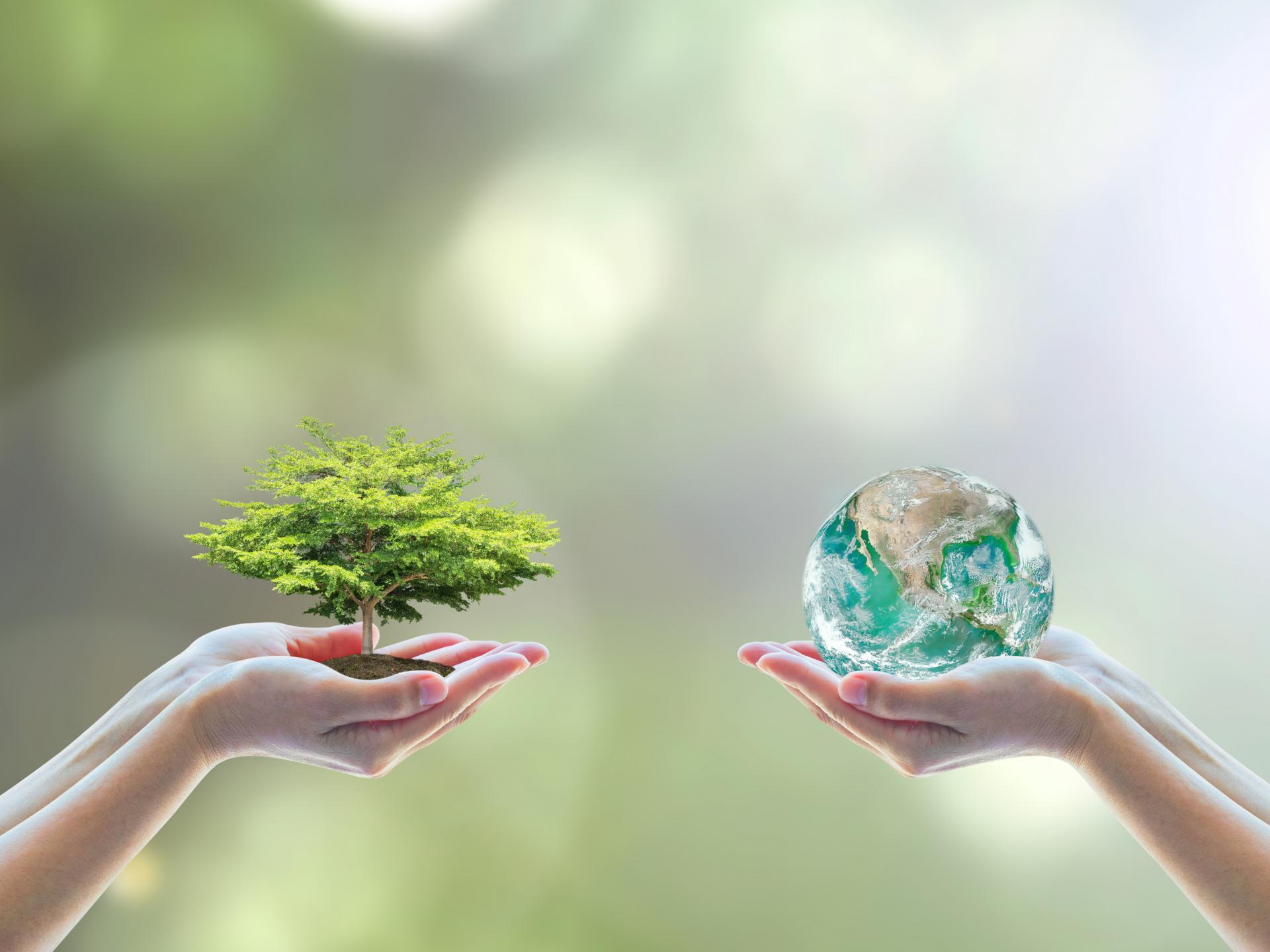 آغاز سومین همایش و بینار ملی آموزش محیط زیست از فردا