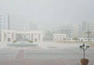 بارش شدید تگرگ در بندرعباس/ برداشت زعفران در خراسان رضوی + فیلم و تصاویر