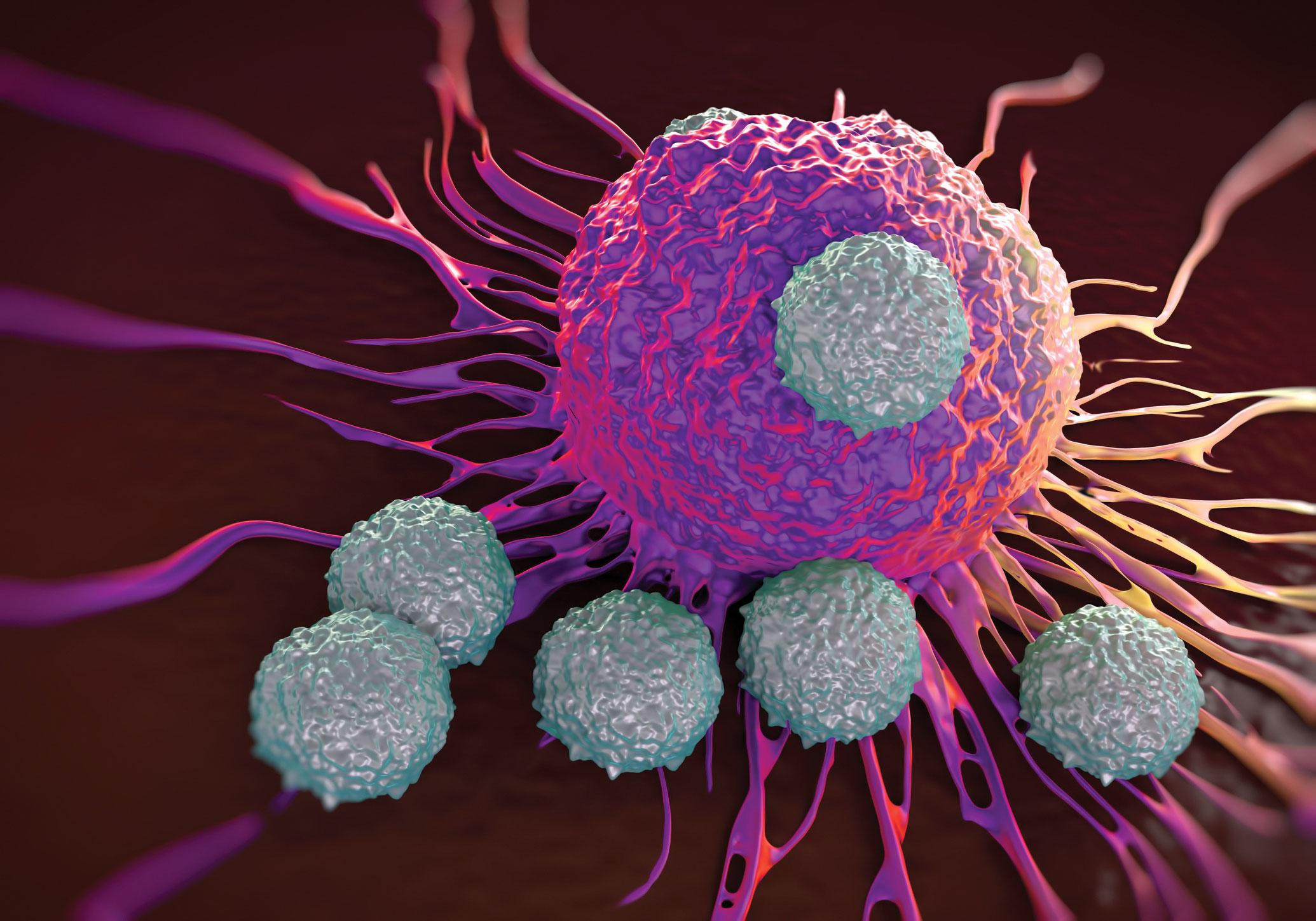 سرطان و عوارض ناشی از آن را با ورزش به زانو در آورید / برنامه ورزشی برای مبتلایان به سرطان