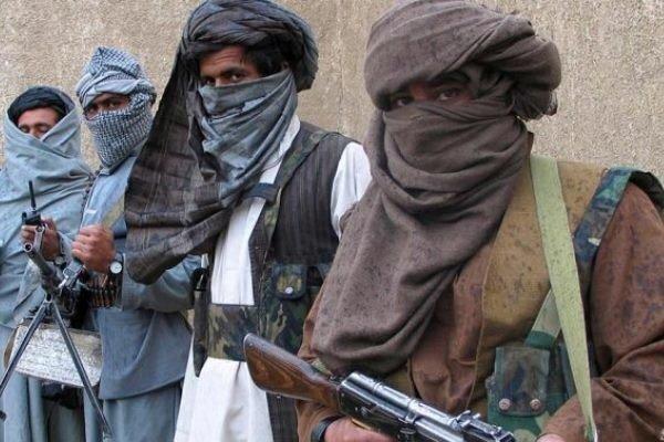 روشهای عجیب غریب گروه تروریستی طالبان برای کسب درآمد !
