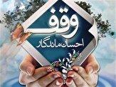 باشگاه خبرنگاران - ۲۹ موقوفه منفعتی در کهگیلویه و بویراحمد وجود دارد
