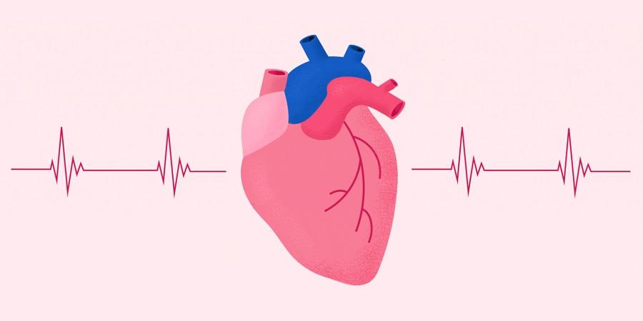 ضربان قلب نرمال چقدر است و چطور می توانیم آن را اندازه بگیریم