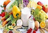 باشگاه خبرنگاران -همایش تغذیه سالم و طبیعی در دامغان