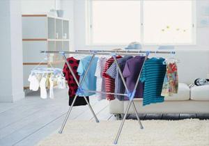 خشک کردن لباس در خانه بستری برای رشد قارچ