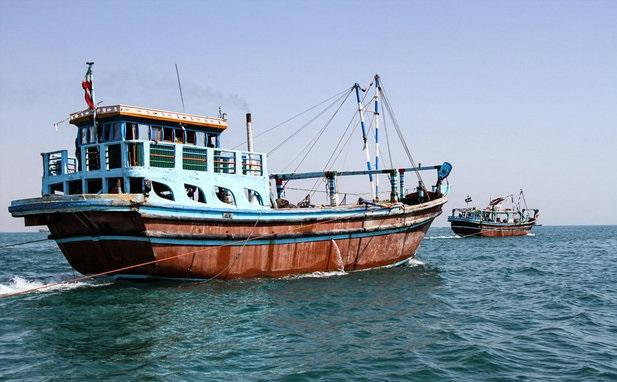 صید فانوس ماهی تکذیب شد
