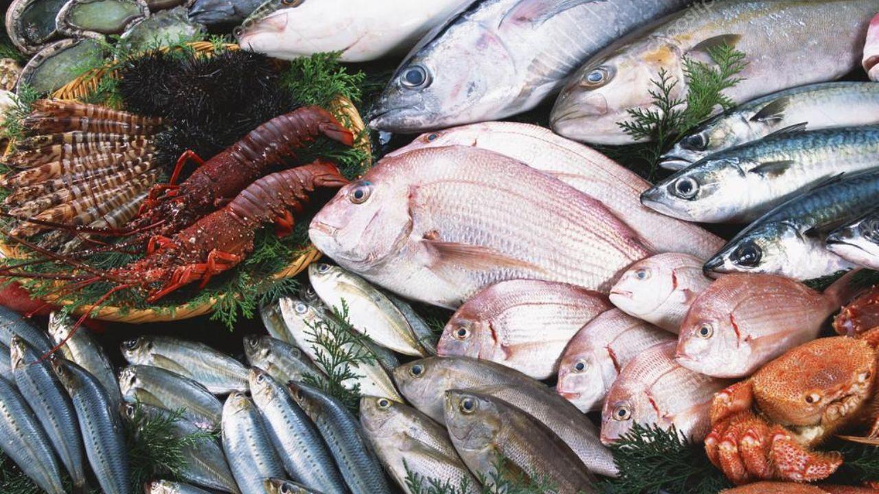 سرانه مصرف محصولات دریایی افزایش می یابد