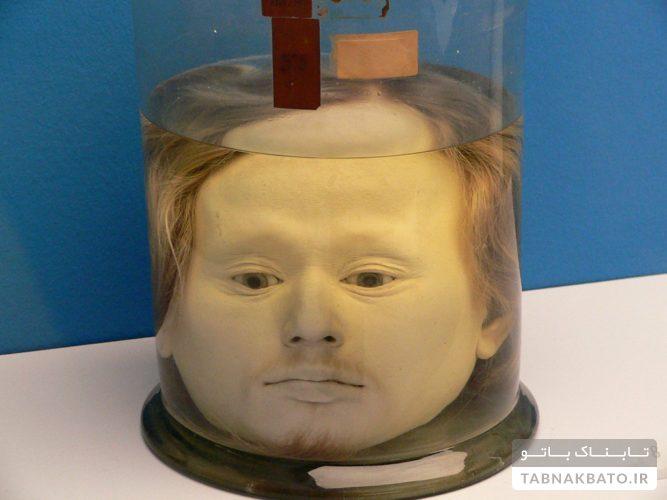راز سر یک انسان در موزه لیسبون