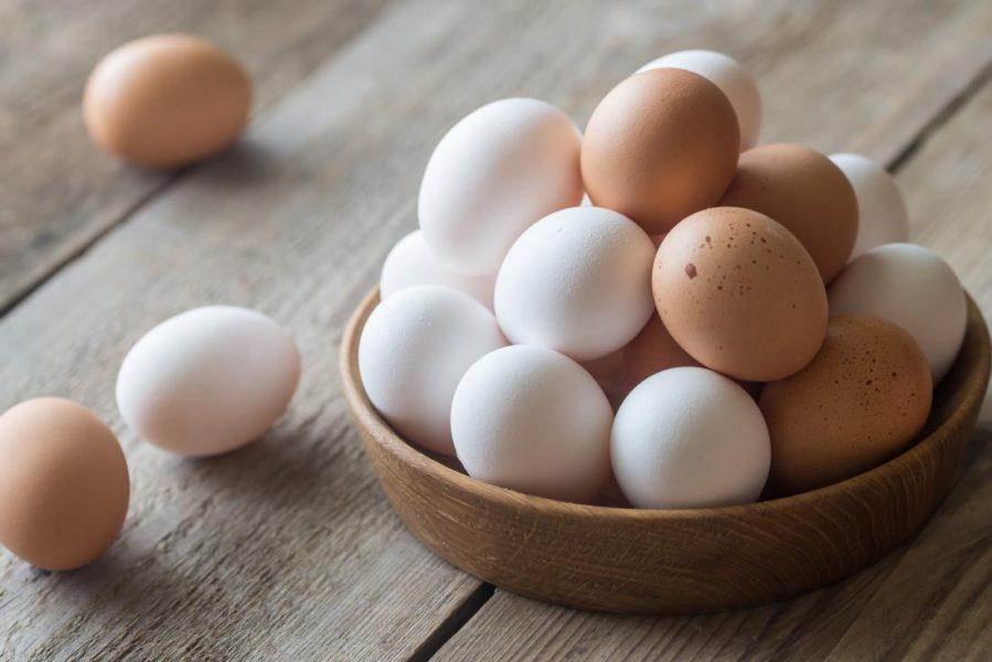 خرید تخم مرغ چقدر تمام می شود؟ + قیمت