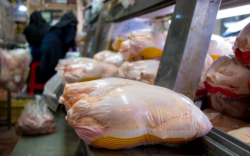 بازار سیاه واکسن و مکملهای خوراکی / قیمت هر کیلو مرغ 13هزار و 500 تومان است