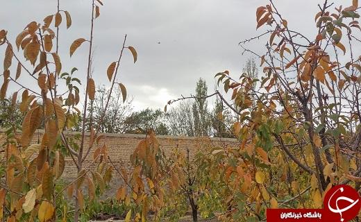 پاییز زیبای فردو به روایت تصویر