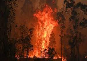 شمار قربانیان آتش سوزی در استرالیا به ۴ نفر افزایش یافت