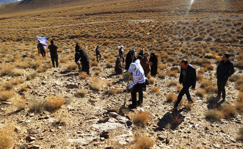 اجرای ۱۰۰ هکتار بذر پاشی در مراتع شهرستانهای رزن و درگزین