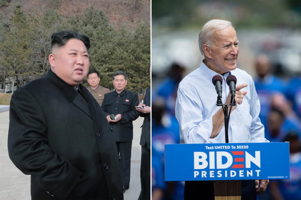 کره شمالی: جو بایدن یک «سگ هار رو به موت» است