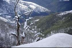 بارش برف پاییزی برخی از مناطق کشور را سفید پوش کرد + فیلم و تصاویر