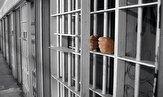 باشگاه خبرنگاران -چه جرائمی مجازات جایگزین حبس ندارند؟
