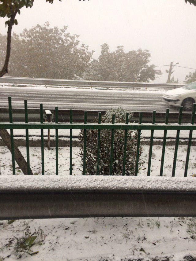 بارش برف تهران را قفل کرد/ شهرداری تهران غافلگیر شد+ فیلم و عکس